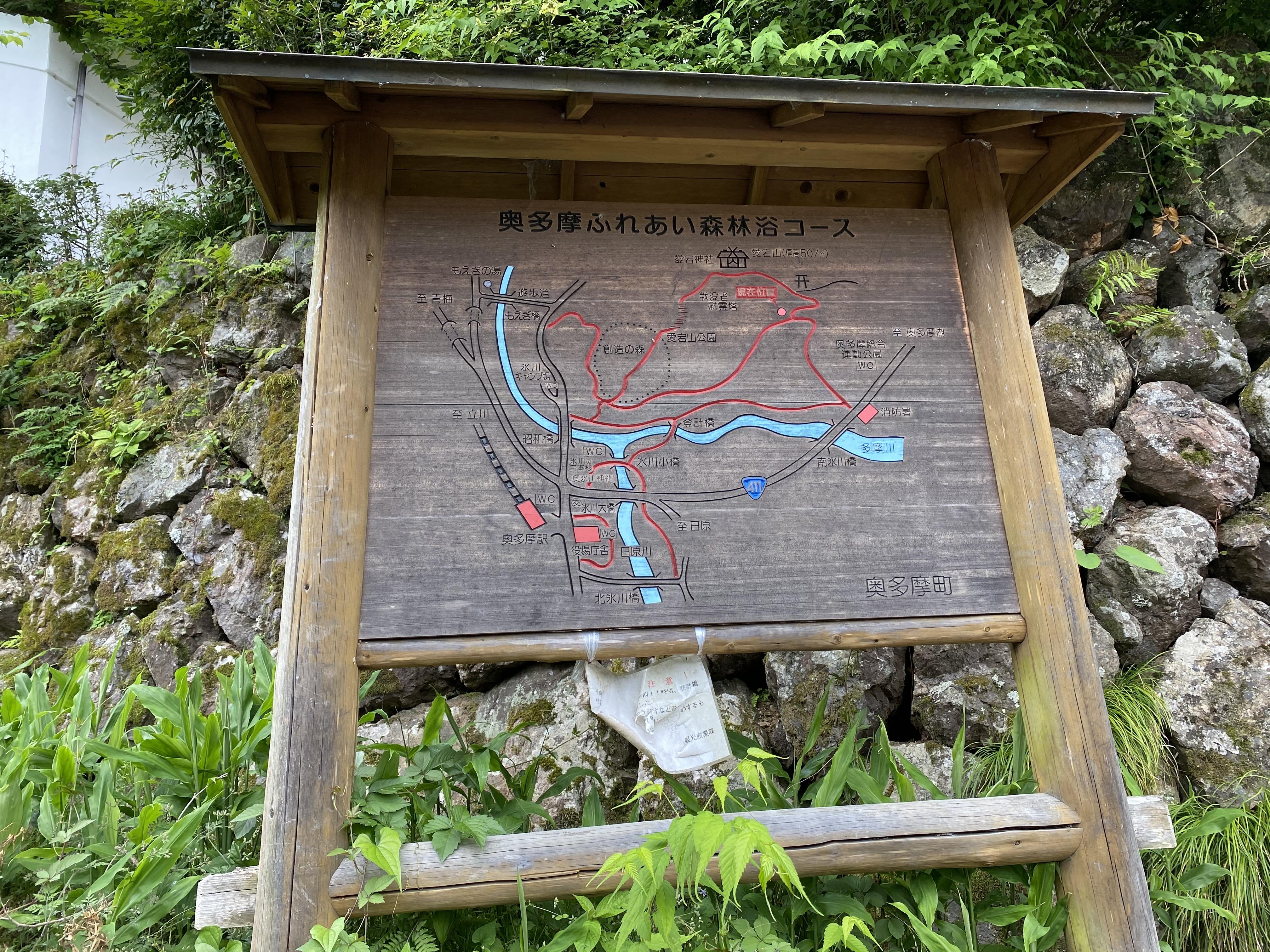 奥多摩ふれあい森林浴コース