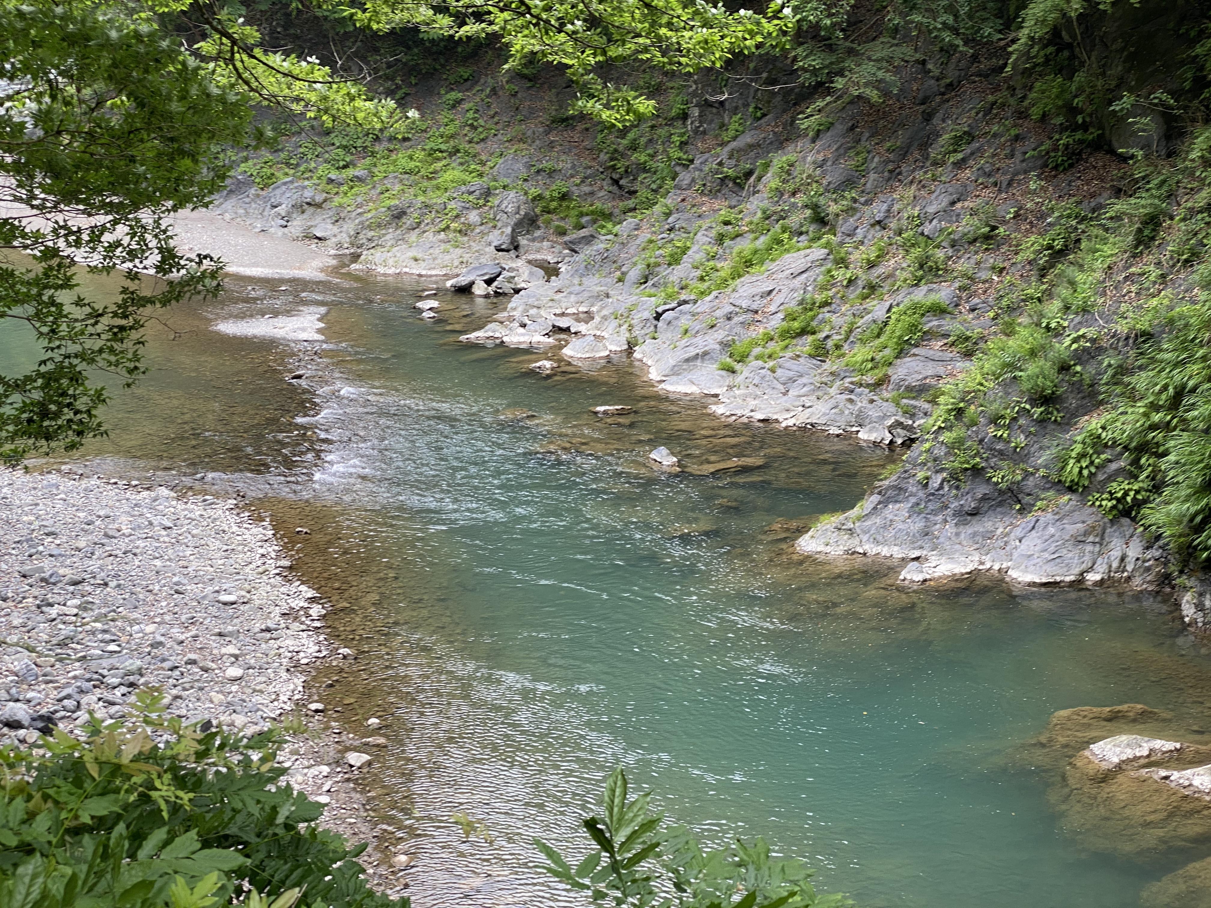 登計橋から多摩川上流を眺める