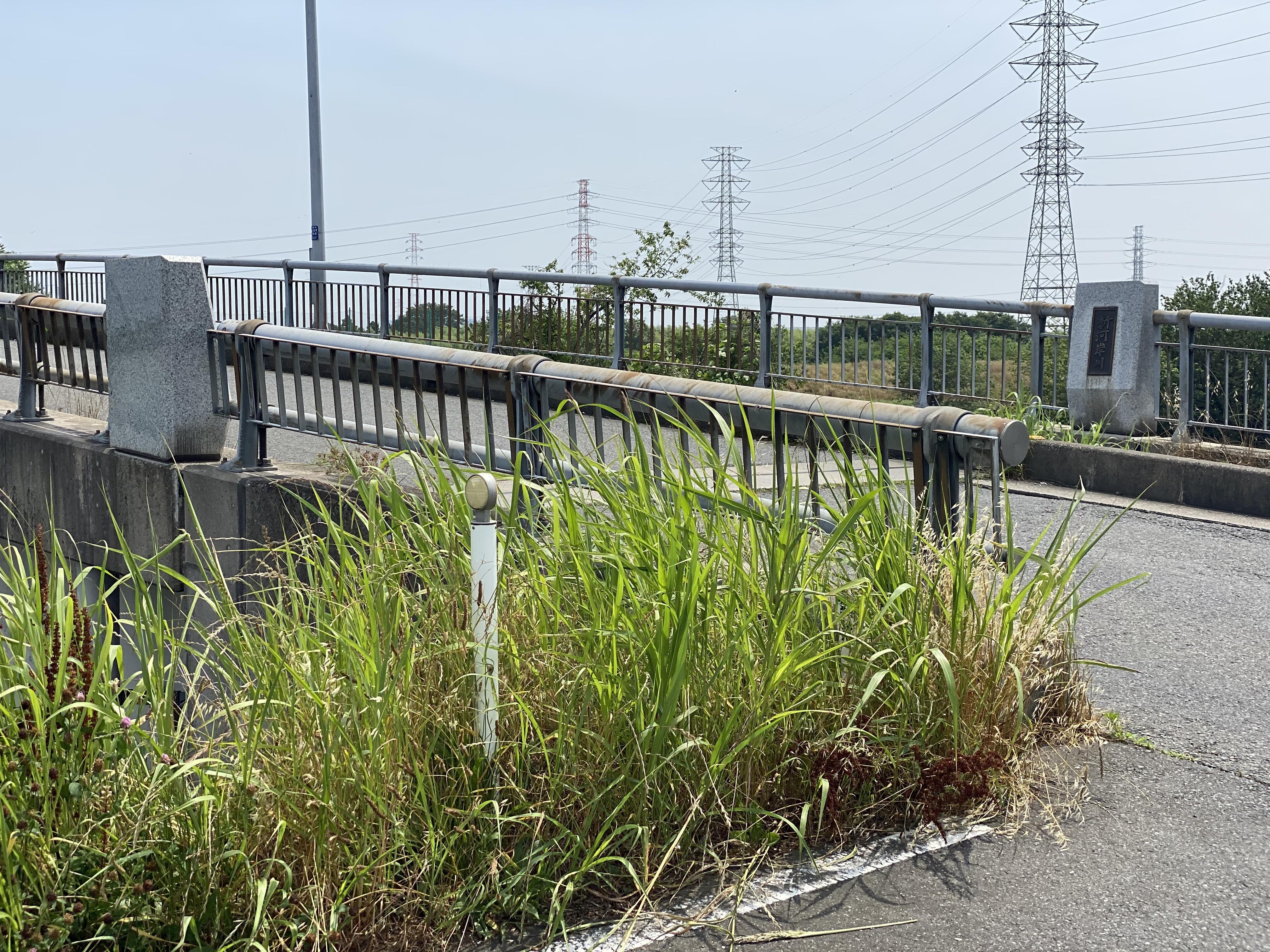 新宮戸橋(埼玉県新宮戸橋)