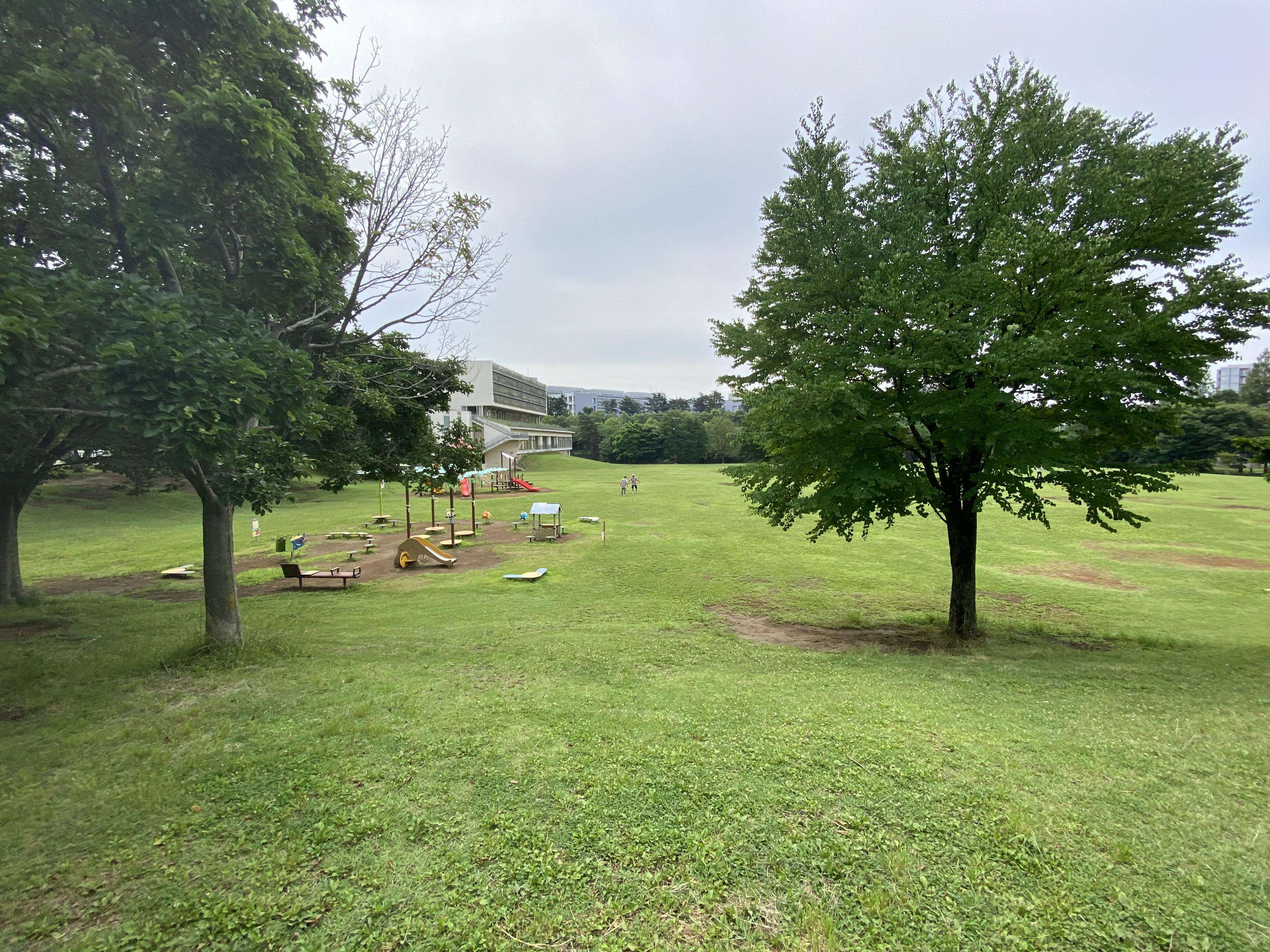 広々とした芝生広場は、スポーツやレクリエーション、ピクニック等さまざまな用途でご利用いただけます