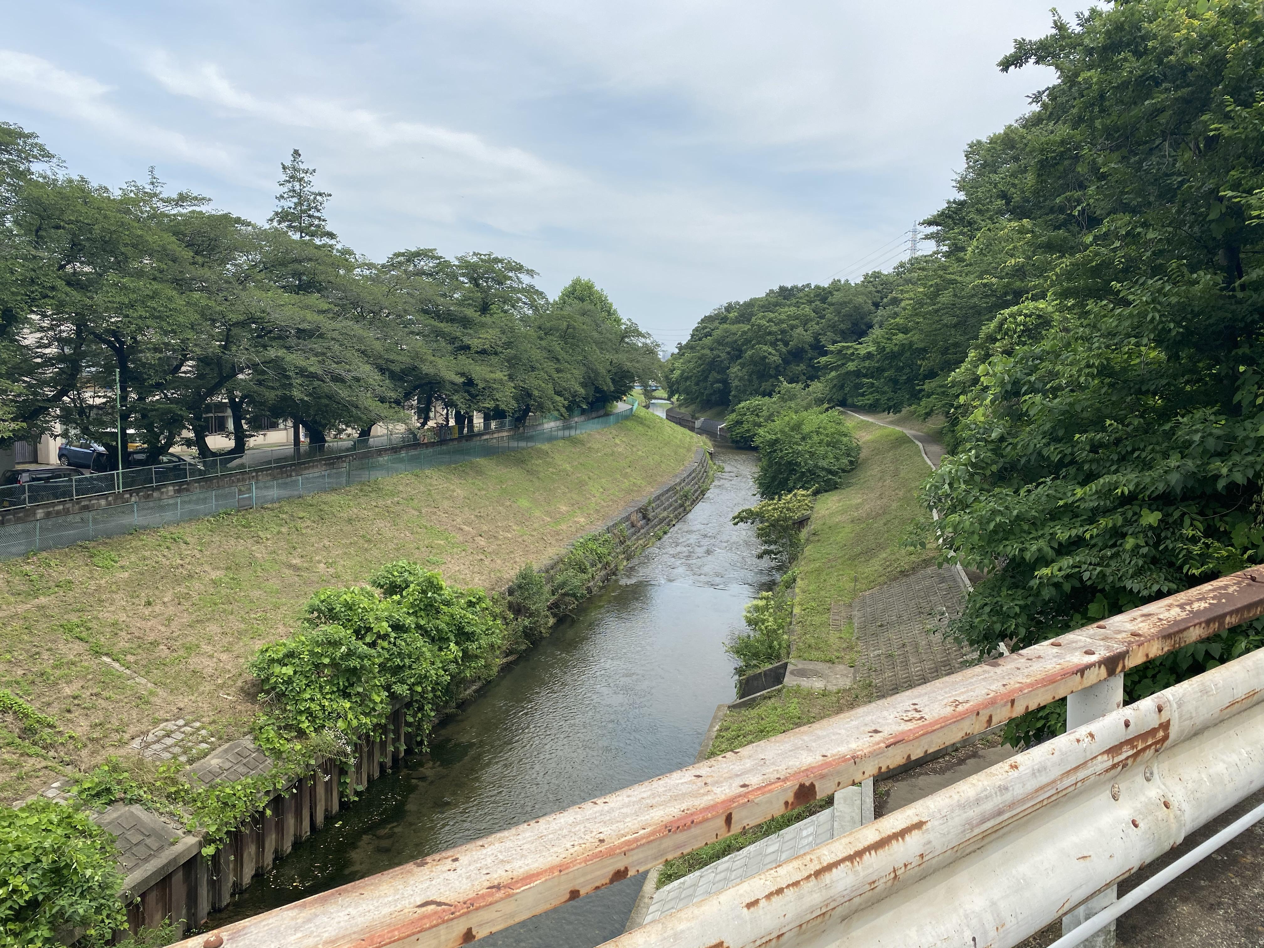 旧道市場坂橋から上流を眺める