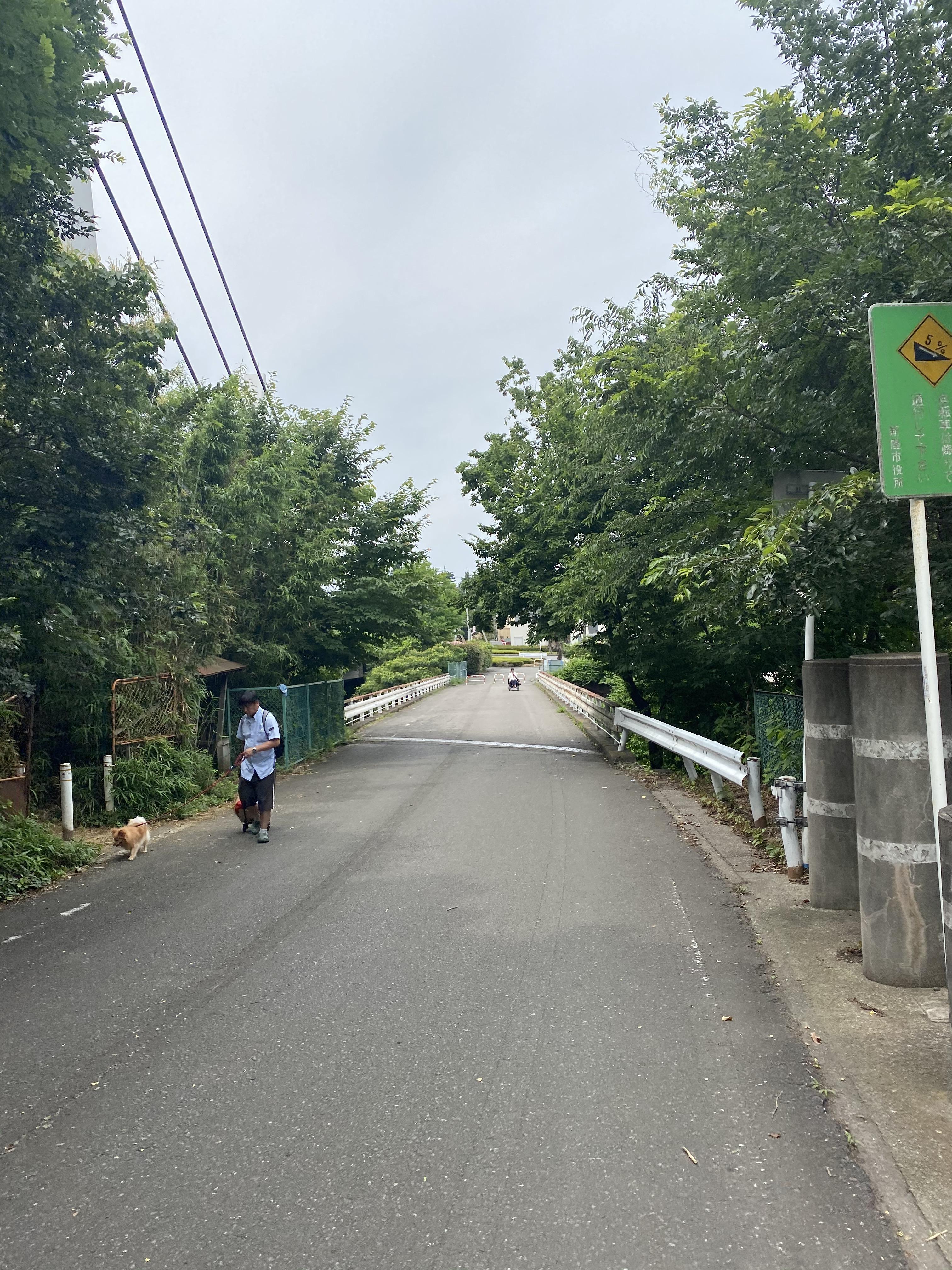 旧道市場坂橋