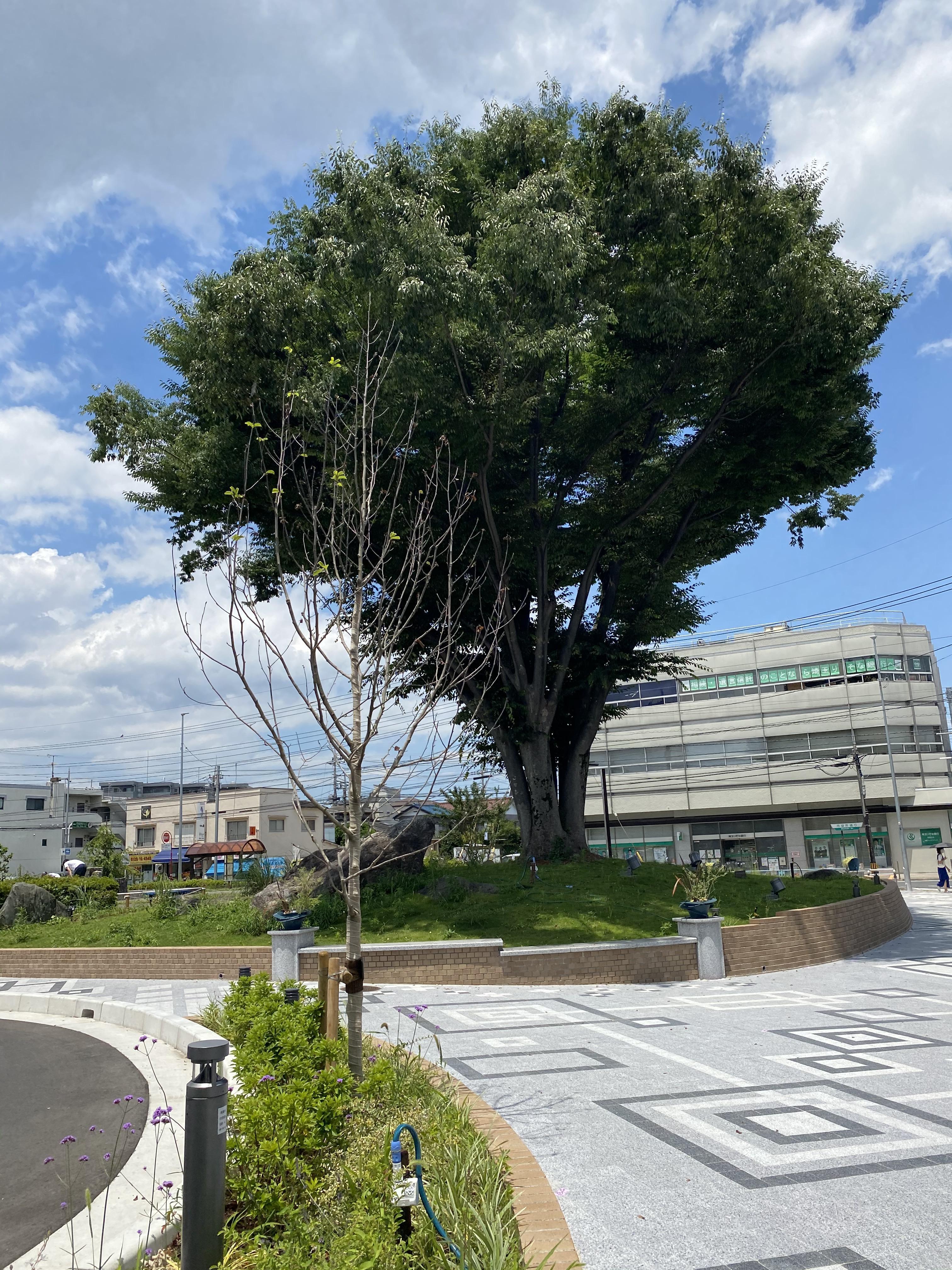 朝霞市役所前広場