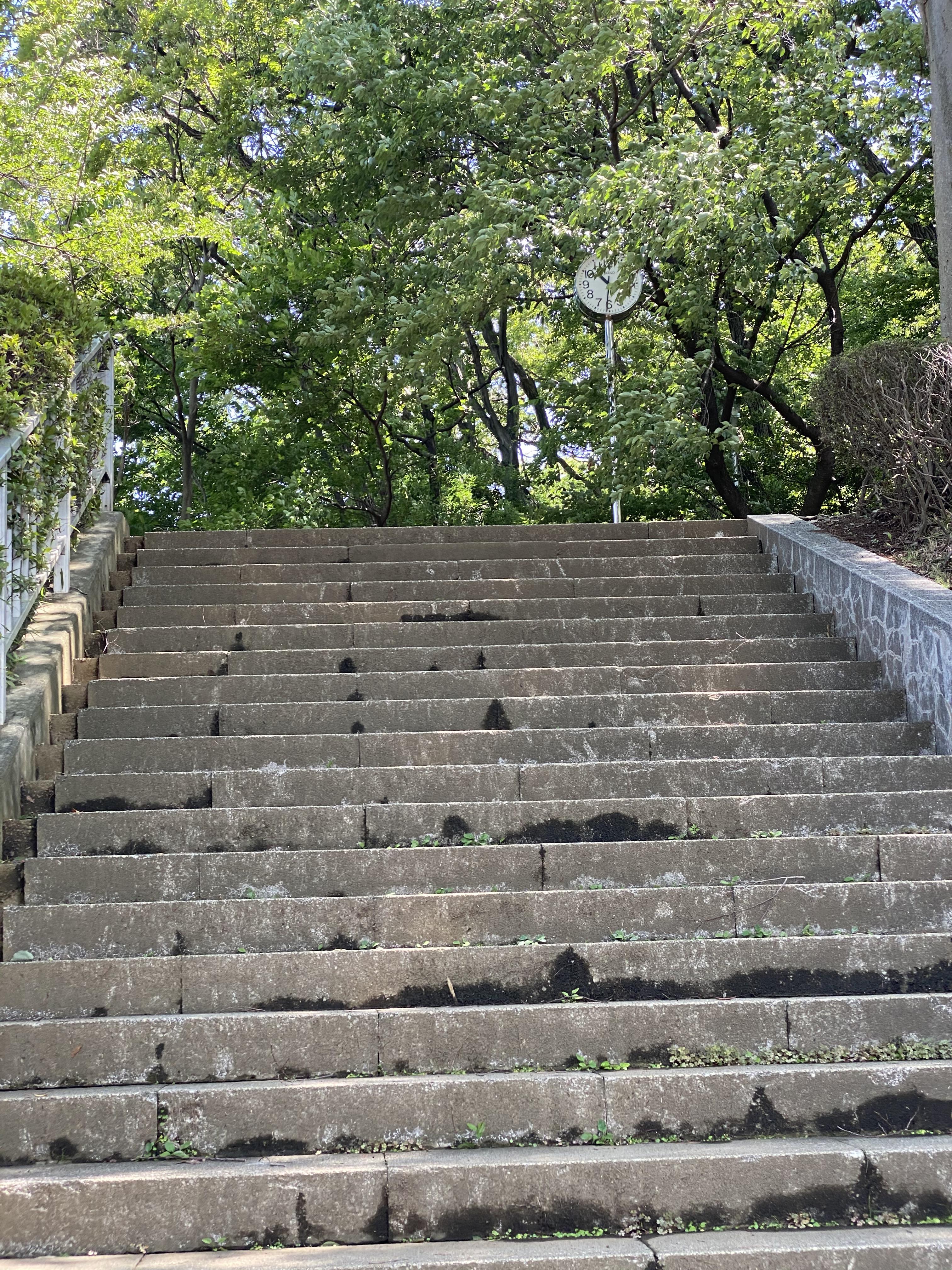 城山公園内階段